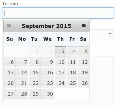 Das date field mit Datumsauswahl bei Contact Form 7
