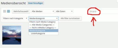 Erweiterte Suche: Name und Medienkategorie