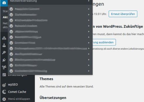 Lösung für: Webseiten in der WordPress Multisite werden nicht angezeigt