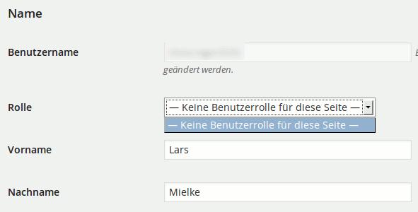 Wenn in WordPress die User Roles/Benutzerrollen weg sind